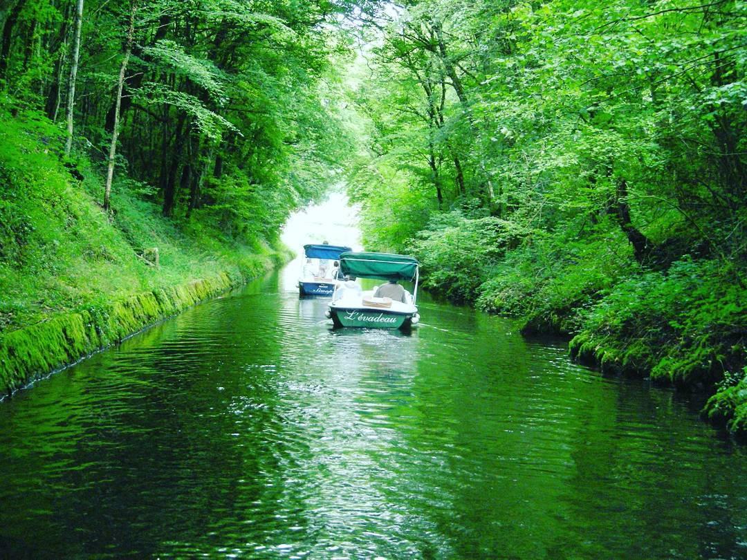 Ballade sur un bateau E-SEA sur la rivière de Crach calme et silencieuse